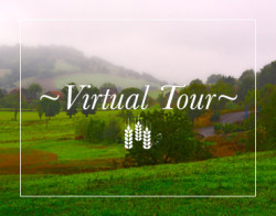 virtual-tour-box
